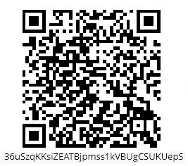 1X1_QR_CODE_BITCOIN_ADR_LEDGER_NANO_BITCOIN